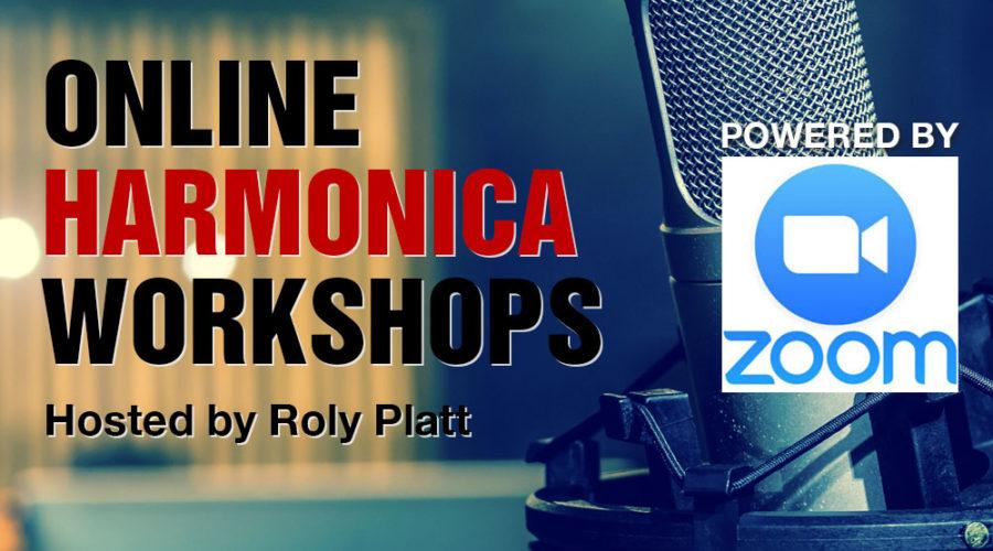 Online Workshop Series with Roly Platt
