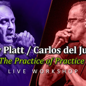Harmonica workshop carlos del junco roly platt